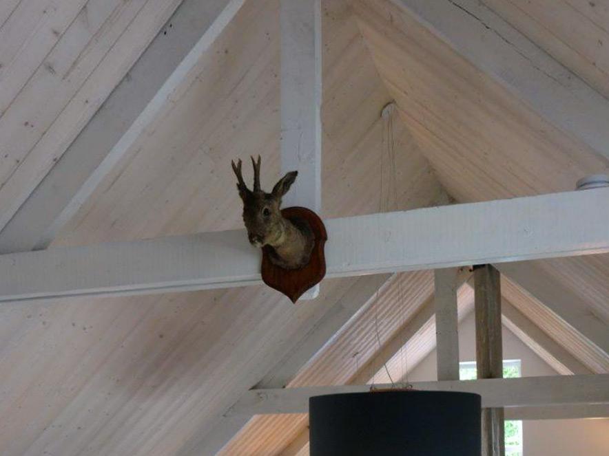 Zelf gedaan! Afwerking plafond met houten planchetten - Houtshop