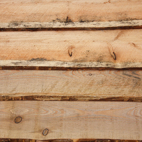 Lariks plank met schors 20x180 220mm 300cm houtshop for Wat is vliesbehang